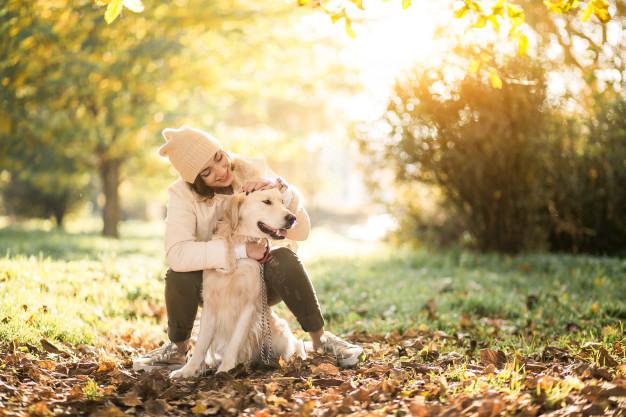 Chenils et gardes d'animaux de compagnie